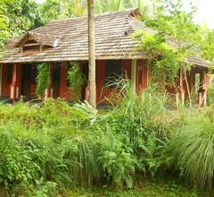 Big Banana Island Retreat 2