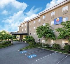 Comfort Inn & Suites 2