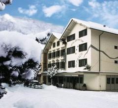 Hotel Alpbach 1