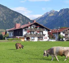 Best Western Plus Hotel Alpenhof 2