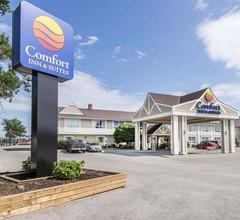 Comfort Inn & Suites 1