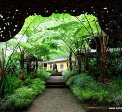 Kaliandra Sejati Eco Resort 1