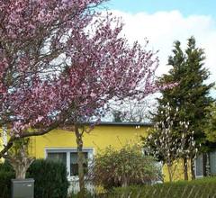 Ferienhaus Sagard RÜG 751 1