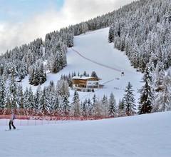 Alpine Hotel Gran Fodá 2