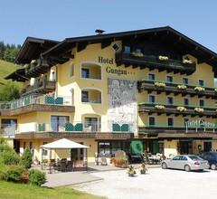 Hotel Gungau 1