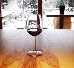 Ferienhof Weingut Lunzer 1