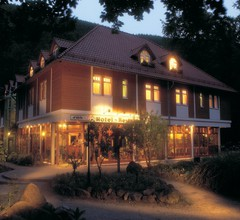 Kurpark Flair Hotel Im Ilsetal 1