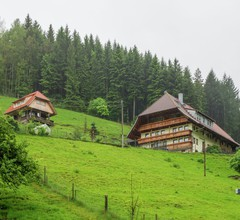 Komfortables Ferienhaus am Waldrand in Mühlenbach 2