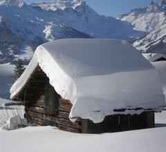 Schönes Appartement in Skigebietnähe im Silbertal 1