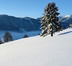 Stunning Mountain View Chalet in La Tzoumaz 2