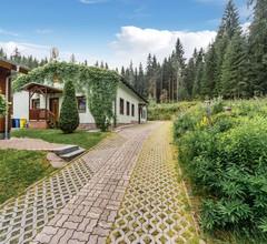 Luxuriöses Ferienhaus mit Trampolin in Jägersgrün 1