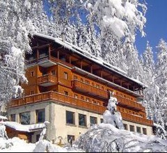 Chalet Hotel Les Campanules 1