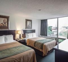 Comfort Inn & Suites Downtown Edmonton 2