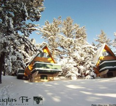 Douglas Fir Resort & Chalets 2