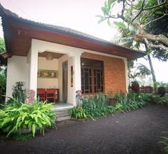 Cepik Villa Sidemen 1
