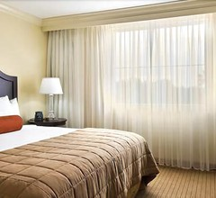 Embassy Suites by Hilton Tampa Brandon 2