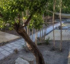 Il Giardino delle Margherite 2