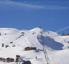Alpenstern 2