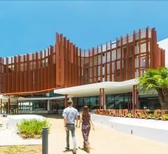 Cairns City Palms 1