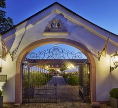 Schloss Reinach 1