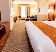 Comfort Suites near Texas Medical Center - NRG Stadium 2