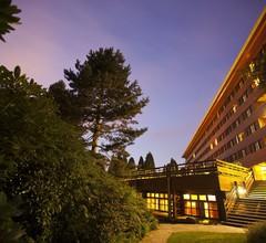 Disney's Sequoia Lodge 1