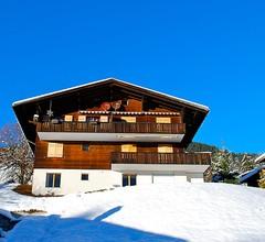 Chalet Blaugletscher 1