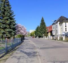 Ferienwohnung für 3 Personen (40 Quadratmeter) in Neubrandenburg 1
