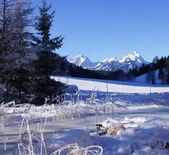 Ferienhütten Brandtner 2