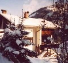 Haus Leitlbach - Haus Leitlbach Ferienhaus direkt an der Piste 1 1