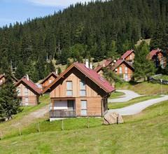 Feriendorf Almhüttendorf Weinebene, St. Gertraud (Ferienhaus/Typ B) 2