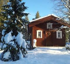 Ferienhaus in Lappland am Wildfluss 1