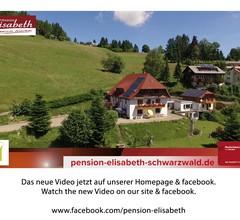 Pension Elisabeth, (Todtnau). Fewo Nr. 06, 1 Schlafraum, 1 Wohn-/Schlafraum, max. 2 Personen 1
