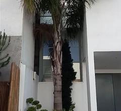 Möbliertes Haus mit 3 Schlafzimmern und Garten zur Miete in Puebla - Mexiko 1