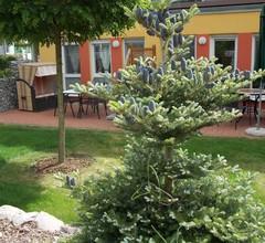 Zempin Ostseepark WE 23 **Insel Usedom**150m zum Strand** - WE 23 2