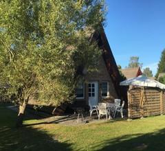 Reetdachhütte im Birkenhain 2