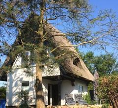 Traumhaftes, reetgedecktes Ferienhaus an der Ostseeküste mit Naturgrundstück 2