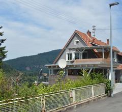 Neue Ferienwohnung mit toller Aussicht nahe Heidelberg 2