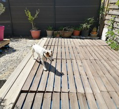 Spaziergang in Vaucluse 1
