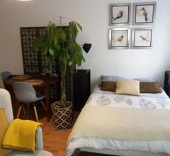 Studio moderne avec terrasse 2