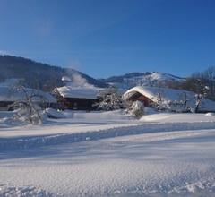 Bauernhof Blattlbauer 2