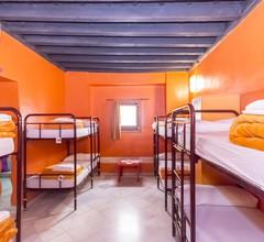 White Nest Hostel 2