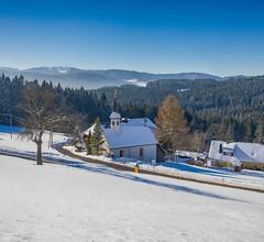 Ferienwohnung für 4 Personen (55 Quadratmeter) in Titisee-Neustadt 2