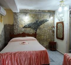 Casa Alavit Appartement 3 1