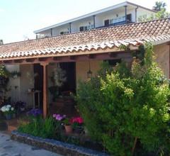 Casa Grøn 1