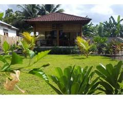 Waiara Village Guesthouse 1