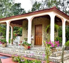 Casa Dona Rosa 2