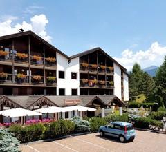 Aparthotel Des Alpes 2