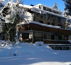 The Treehouse Backpacker Hostel 1