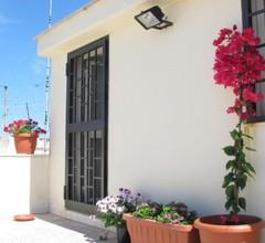 Olive Tree - Hostel 2